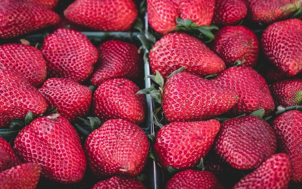 Fruits rouges : les délices sains de l'été