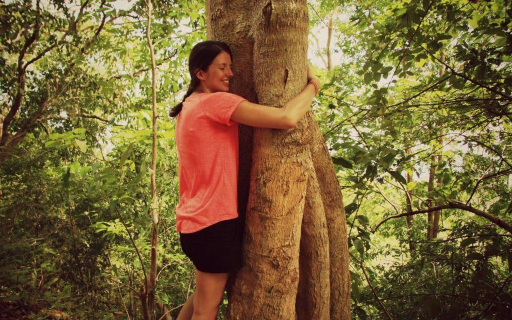 Faire un câlin à un arbre ou la Sylvothérapie