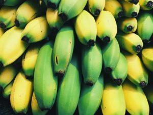 Bananes vertes et bananes mures