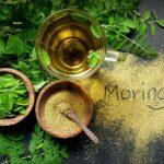 Moringa: bienfaits et utilisation de l'arbre de vie